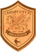 Cardiff City FC 3D Shield Thing
